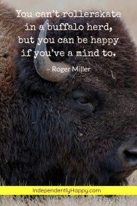 rollerskate in a buffalo herd