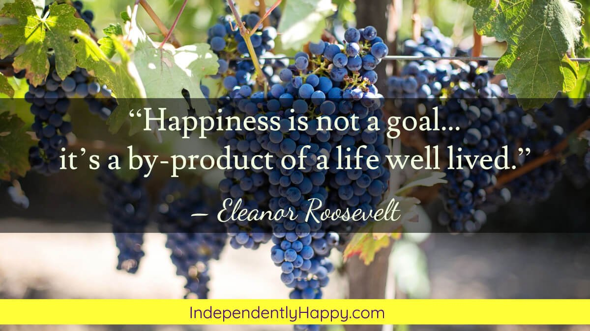 happiness is a byproduct of a life well lived
